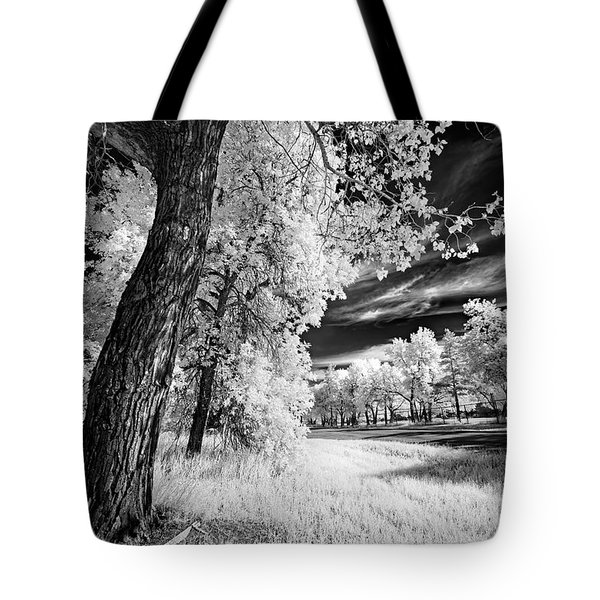 Tote Bag featuring the photograph Spring Sky by Dan Jurak
