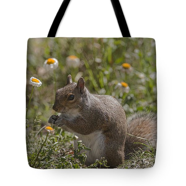 Spring Squirrel Tote Bag by Diane Giurco
