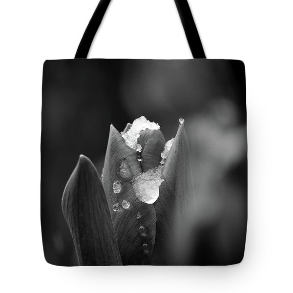 Tote Bag featuring the photograph Spring Start by Silke Brubaker