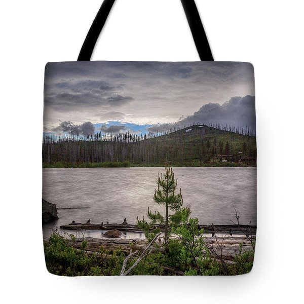 Tote Bag featuring the photograph Spring Storm At Round Lake by Cat Connor