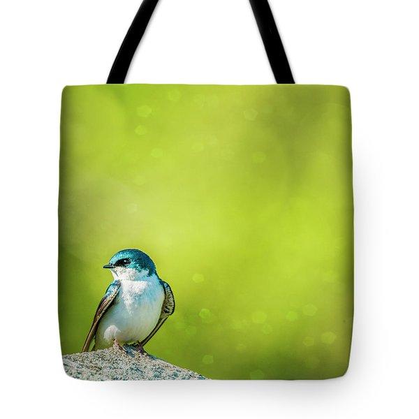 Spring Swallow Tote Bag