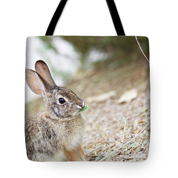 Spring Time Tote Bag