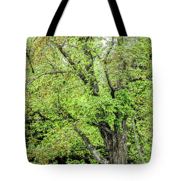 Spring Time By The River Tote Bag