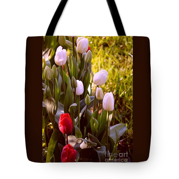 Tote Bag featuring the photograph Spring Time Tulips by Susanne Van Hulst
