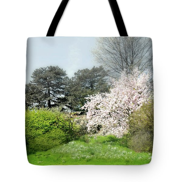 Tote Bag featuring the photograph Spring Treasures by Diana Angstadt