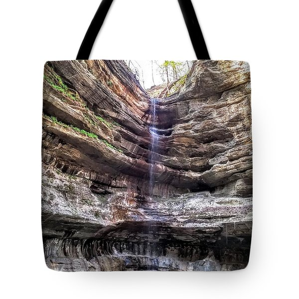 Spring Trickling In Tote Bag