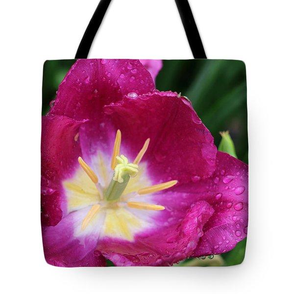 Spring Tulips 47 Tote Bag