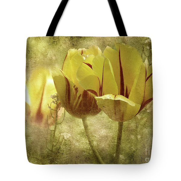 Tote Bag featuring the photograph Spring Tulips by Elaine Manley
