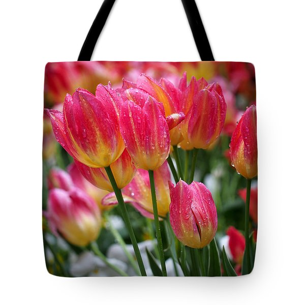 Spring Tulips In The Rain Tote Bag by Rona Black