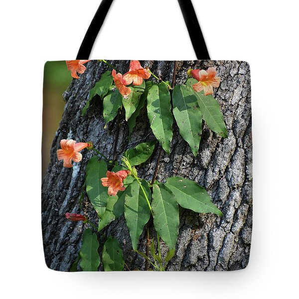 Tote Bag featuring the photograph Vinery by Skip Willits