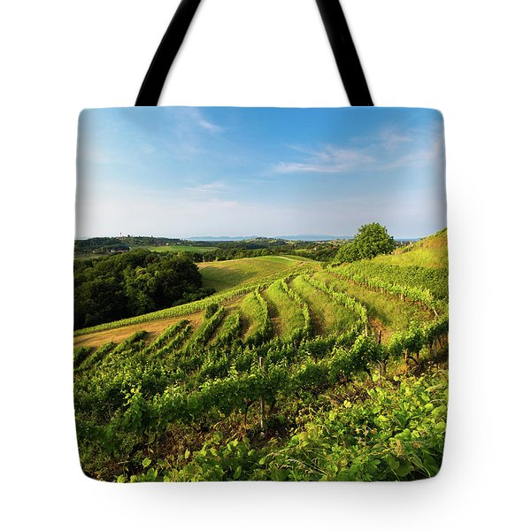 Tote Bag featuring the photograph Spring Vinyard by Davor Zerjav
