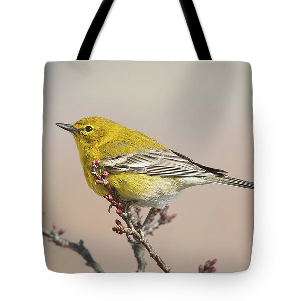 Tote Bag featuring the photograph Spring Warbler 1 2017 by Lara Ellis