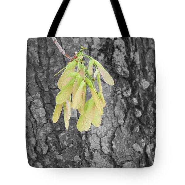 Spring Whirligig Tote Bag