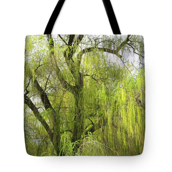 Spring Willow Tote Bag
