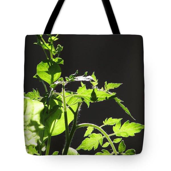 Spring103 Tote Bag