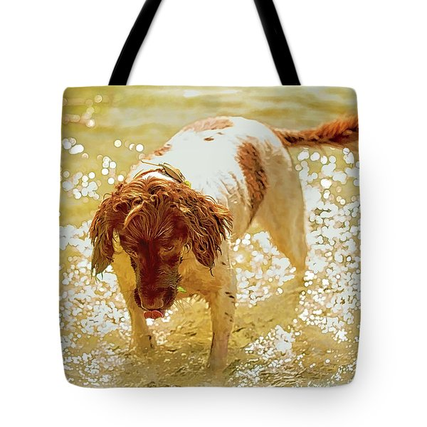 Tote Bag featuring the photograph Springer Wc by Constantine Gregory