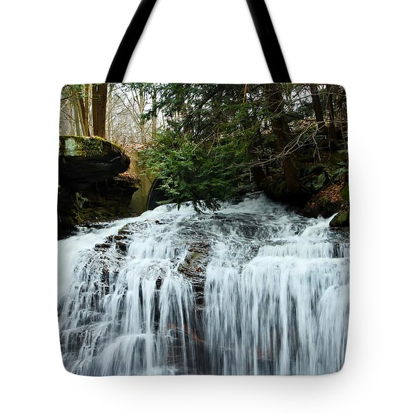 Springfield Falls Tote Bag by Skip Tribby