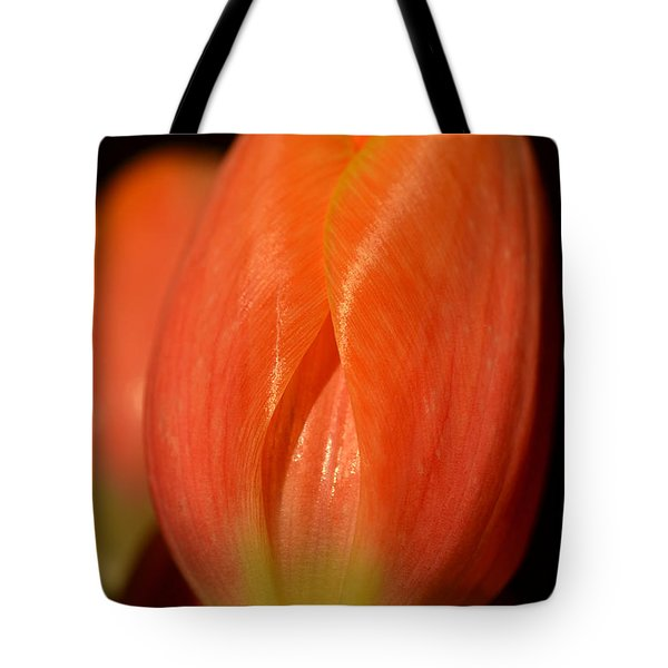 Spring's First Blush Tote Bag