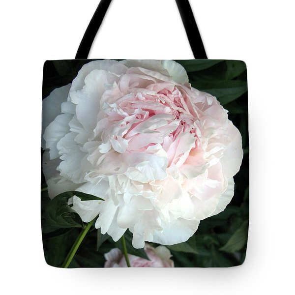 Tote Bag featuring the photograph Springs Peony by Carol Sweetwood
