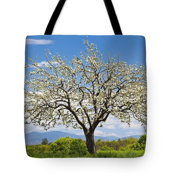 Springtime Apple Tree Tote Bag