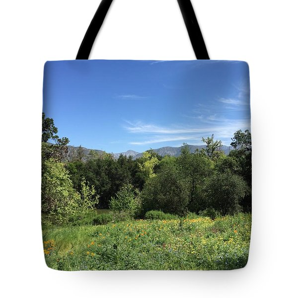 Springtime At Descanso Gardens Tote Bag by Jan Cipolla