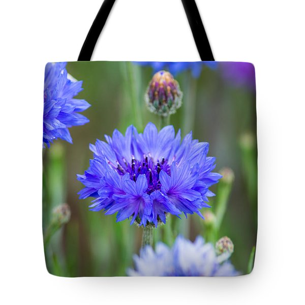 Springtime Blues Tote Bag