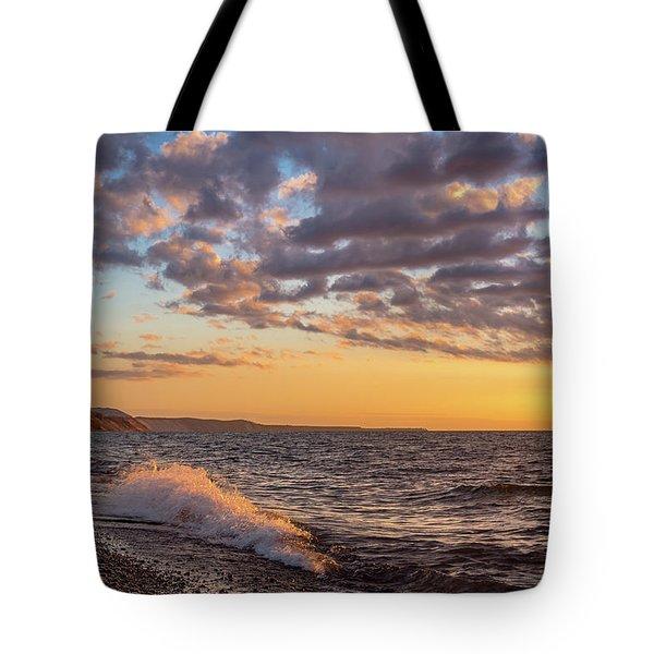 Springtime On Agate Beach Tote Bag