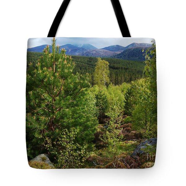 Springtime On Deeside - Scotland Tote Bag