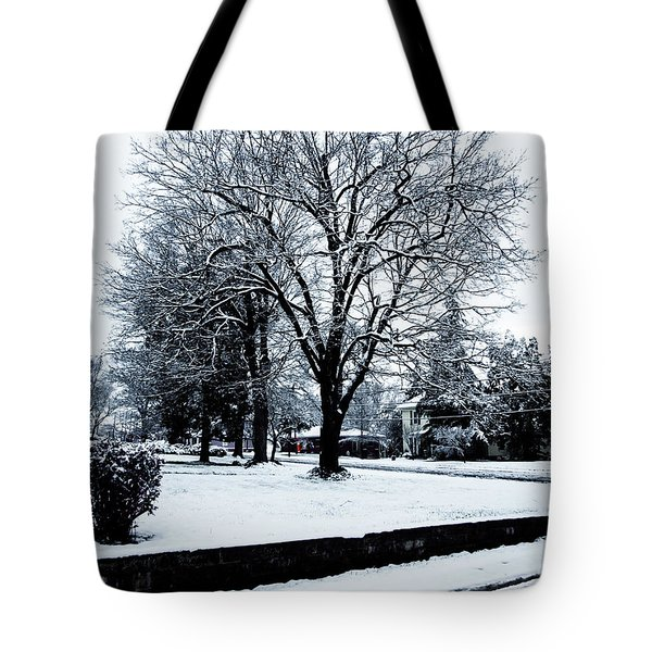Tote Bag featuring the photograph Springtime  by Randy Sylvia