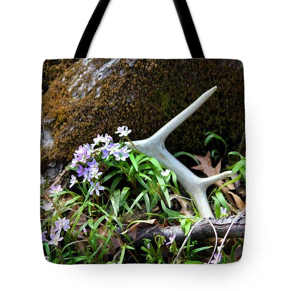 Springtime Shed Anter Tote Bag