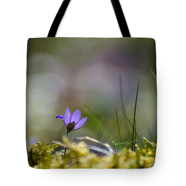 Tote Bag featuring the photograph Springtime Sign Flower by Kennerth and Birgitta Kullman