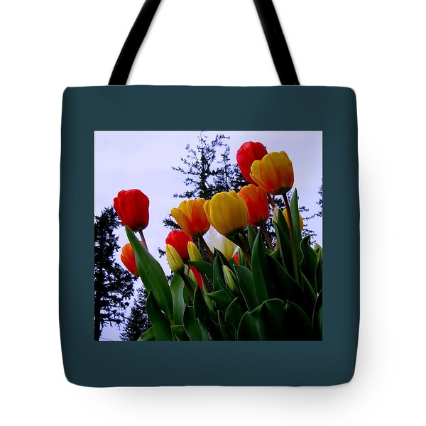 Springtime Wonder  Tote Bag