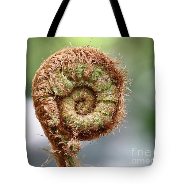 Sprout Of Ferns Tote Bag by Michal Boubin