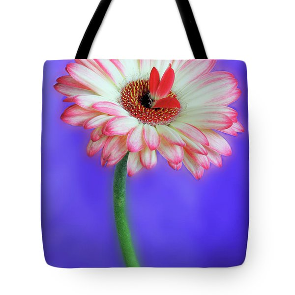 Sprouting Dahlia Tote Bag