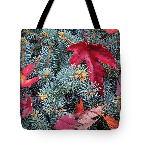 Tote Bag featuring the photograph Spruce And Maple by Mark Mille