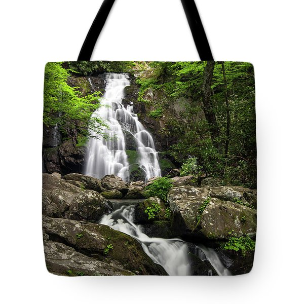 Tote Bag featuring the photograph Spruce Flats Falls - D009919 by Daniel Dempster