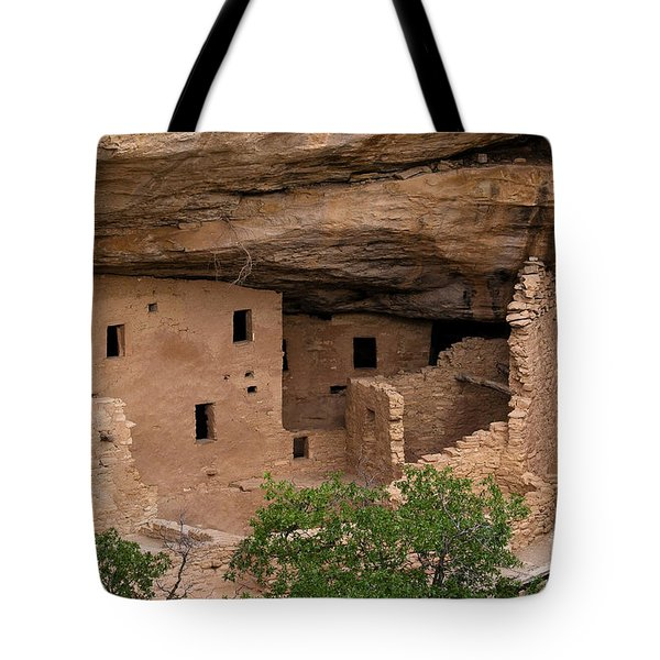 Spruce Tree House Overlook Tote Bag