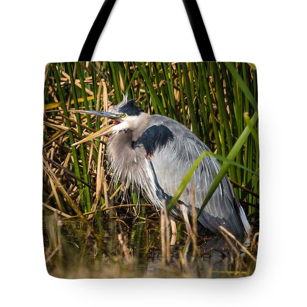 Tote Bag featuring the photograph Squawking Heron by Gregory Daley  PPSA