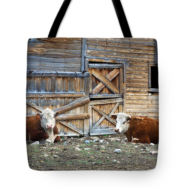 Squires Herefords By The Rustic Barn Tote Bag