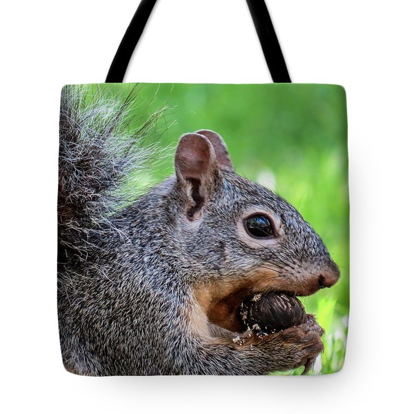 Squirrel 1 Tote Bag
