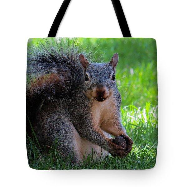 Squirrel 2 Tote Bag