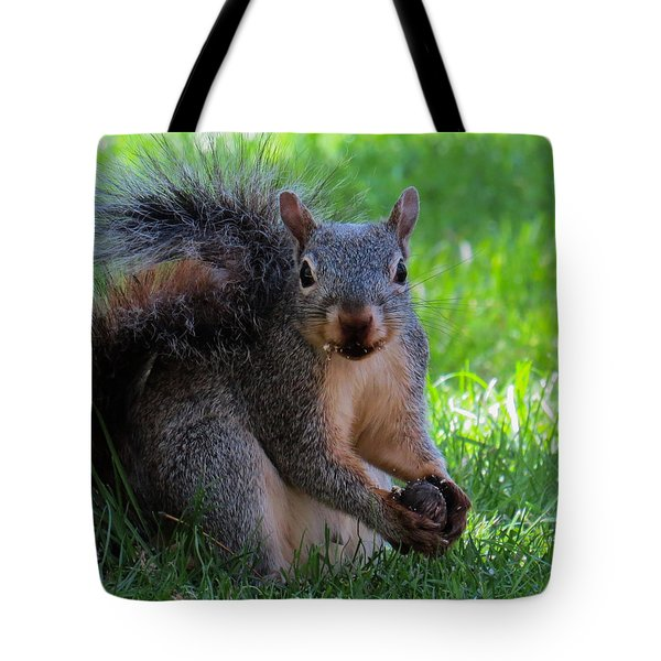 Squirrel 2 Tote Bag