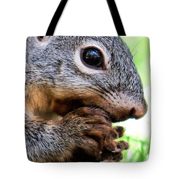 Squirrel 3 Tote Bag