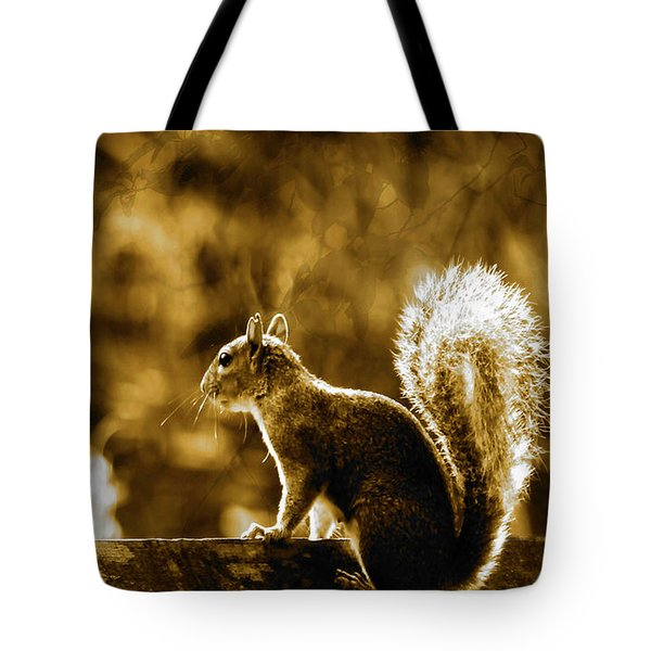 Tote Bag featuring the photograph The Start Of A New Day  by Fine Art By Andrew David