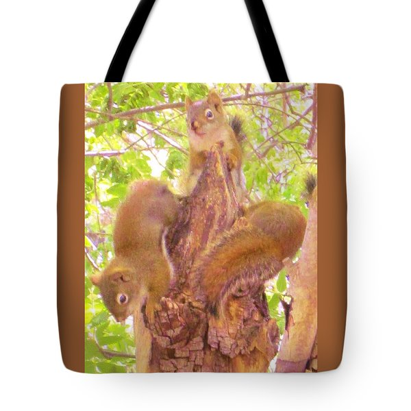Squirrel Babies Play Tote Bag by Cathy Long