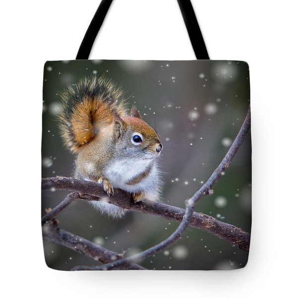 Tote Bag featuring the photograph Squirrel Balancing Act by Patti Deters