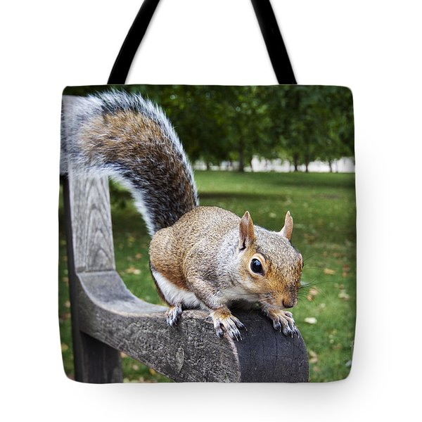 Squirrel Bench Tote Bag