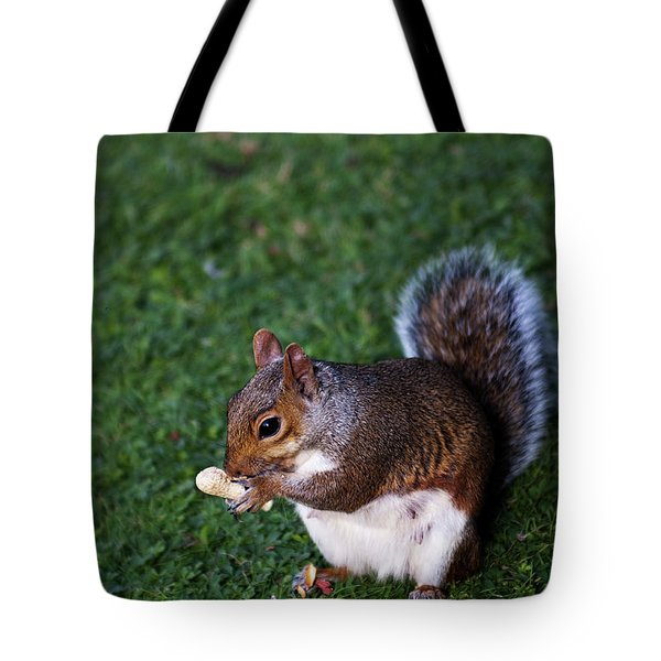 Squirrel Eating Tote Bag