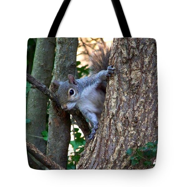 Squirrel I Tote Bag by Jai Johnson