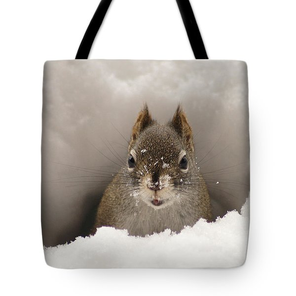 Squirrel In A Snow Tunnel Tote Bag